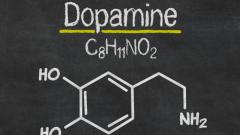 Что такое дофамин