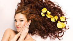 Народные средства для здоровья волос
