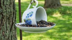 Из чего сделать кормушку для птиц: три оригинальные идеи