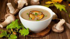 Как приготовить вкусный сливочный суп с грибами