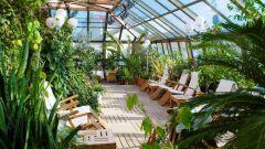 Как соорудить зимний сад