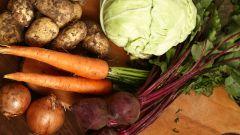 Как правильно готовить овощи: полезные советы