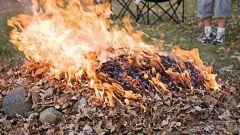 Что сжигать на дачном участке