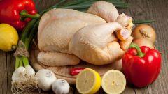 Что нужно знать о курином мясе
