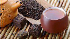 Как правильно выбрать чай сорта пуэр