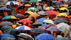 Как выбрать зонт к весне