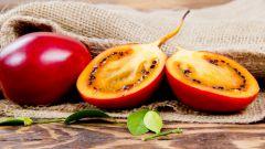 Как приготовить тамарилло под соусом