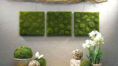 Растения  в интерьере - путь к неординарности и уюту