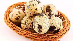 В чем заключается польза перепелиных яиц