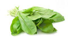 Как сварить зеленые щи из щавеля или другой зелени