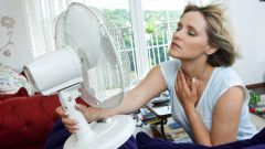 Как спастись от надоедливой жары
