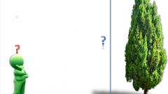 Как просто определить высоту дерева