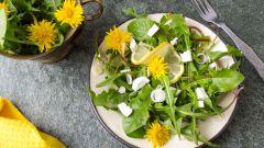 Как приготовить салаты с одуванчиками