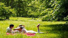 Как устроить экономичный пикник на природе