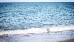 Как эффективно отдохнуть на море