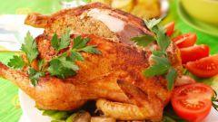 Как готовить простые блюда из курицы