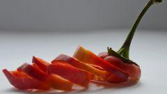 Готовим непривычные блюда из болгарского перца
