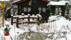 Как ухаживать за садом зимой