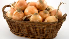 Как хранить репчатый лук: полезные советы