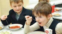 Как и чем кормить школьника