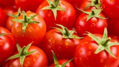 Как засолить помидоры по-сыроедчески