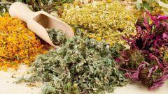 Какие витамины принимать после 50 лет женщине