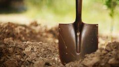 Надо ли перекапывать почву осенью
