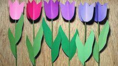 Как сделать тюльпаны из цветной бумаги