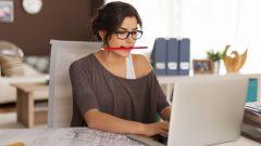 Как новичку заработать первые деньги в интернете
