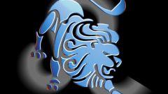 Каким будет любовный гороскоп Льва на 2018 год