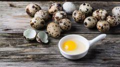 Сколько варить по времени перепелиные яйца