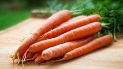 Сколько варить морковь различными способами