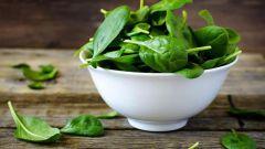 Что такое шпинат и с чем его едят