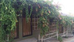 Как просто отдохнуть в Пхангане