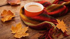Какой чай полезен осенью