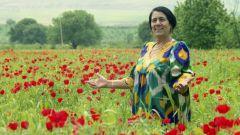 Нигина Раупова: биография, творчество, карьера, личная жизнь