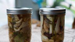 Маринованные вешенки: рецепты с фото для легкого приготовления