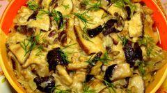 Грибы тушеные: рецепты с фото для легкого приготовления