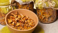 Грибы маринованные на зиму: рецепты с фото для легкого приготовления