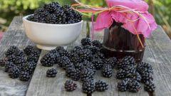 Варенье из ежевики: рецепты с фото для легкого приготовления