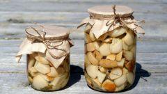 Маринованные белые грибы: рецепты с фото для легкого приготовления