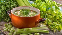 Сельдереевый суп: рецепты с фото для легкого приготовления