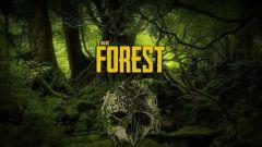 Как выжить после авиакатастрофы в игре «The Forest»