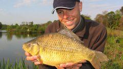 Особенности ловли золотого карася на глухих водоемах