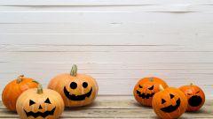 Как выбрать тыкву на Хэллоуин