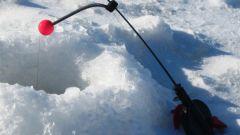 Для чего нужен кивок для зимней рыбалки