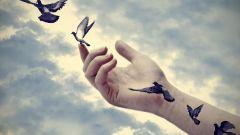 Можно ли юристам делать татуировки