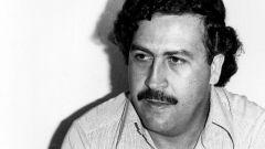 Пабло Эскобар: биография, карьера и личная жизнь