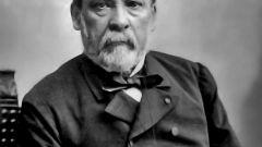 Луи Пастер: биография, творчество, карьера, личная жизнь