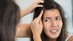 Можно ли выдергивать седые волосы